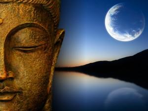meditatzia 2